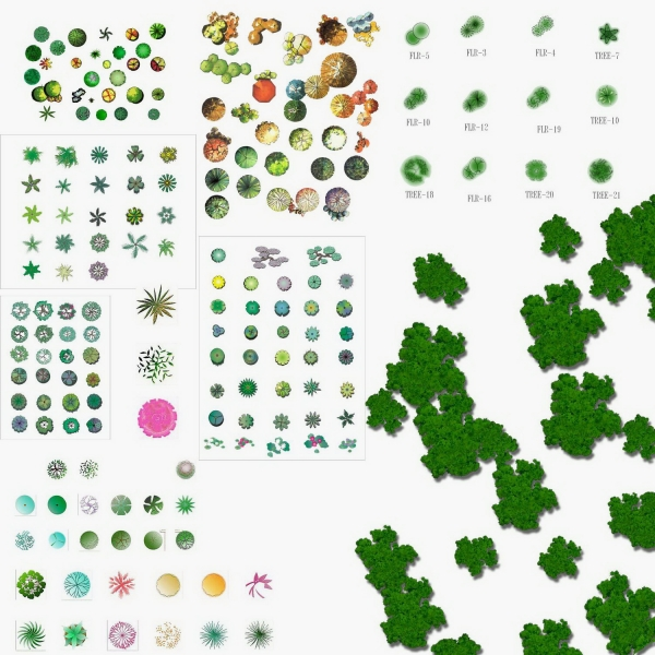 园林植物平面素材_exposure.jpg